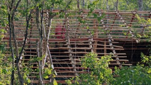Colocación de viguetas (GILES en Maya)