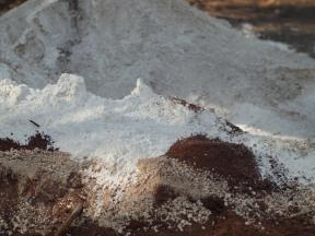 Sascab + tierra roja + cal = mezcla para la construcción de la cimentación