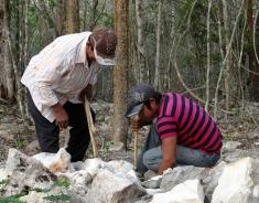Haciendo la cimentación para las columnas (BOCOM en Maya)