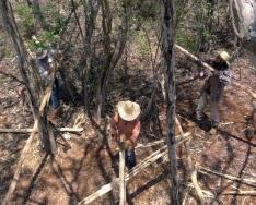 Lijando las maderas y barnizándolas