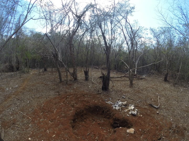 De todo el terreno decidimos que esta iba a ser la zona para la construcción del gallinero