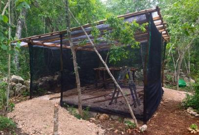 Las paredes las pusimos de malla sombra para que el viento pueda circular y no se concentre el calor pero que proteja a los almácigos de insectos, reptiles y aves